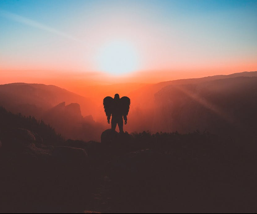 man with wings standing on brown mountain peak